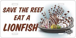 Save the reef, eat a lion